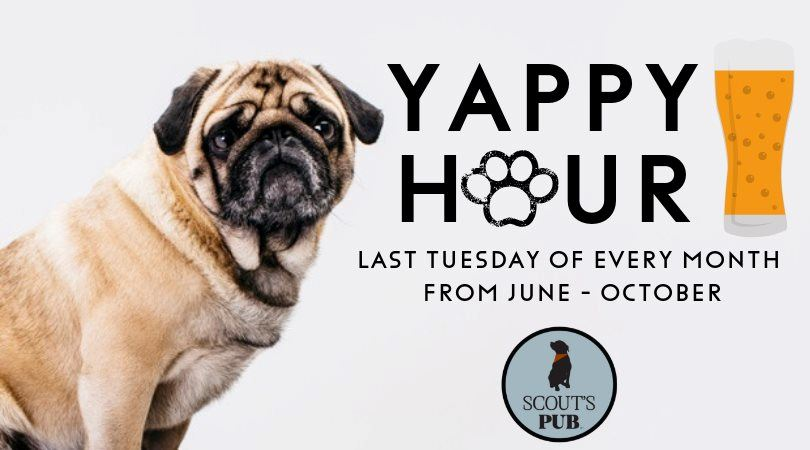 Yappy Hour June October 2019