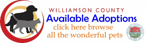 Williamson County - click here to browse all the wonderful pets